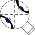 Conoscope biaxial positive.png